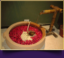 Moksha Spa and Massage Center