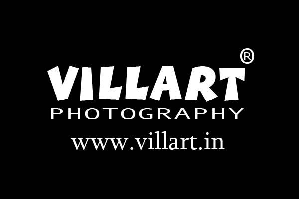Villart Photography