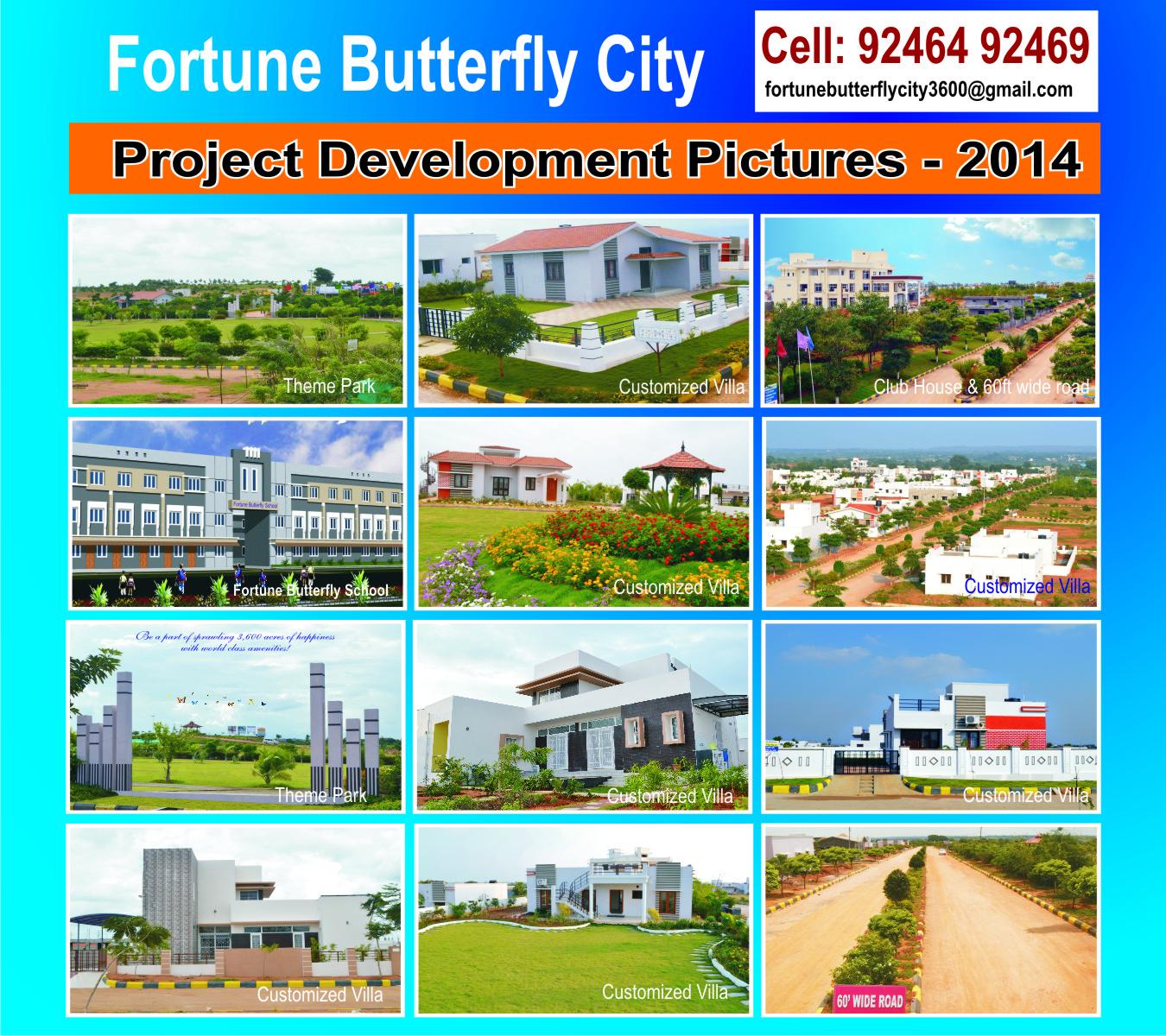Fortune Butterflycity