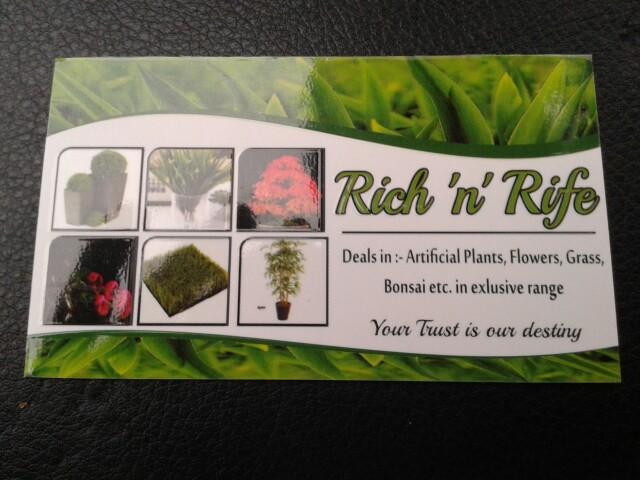 Rich n rich
