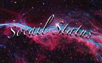Socail Stauts