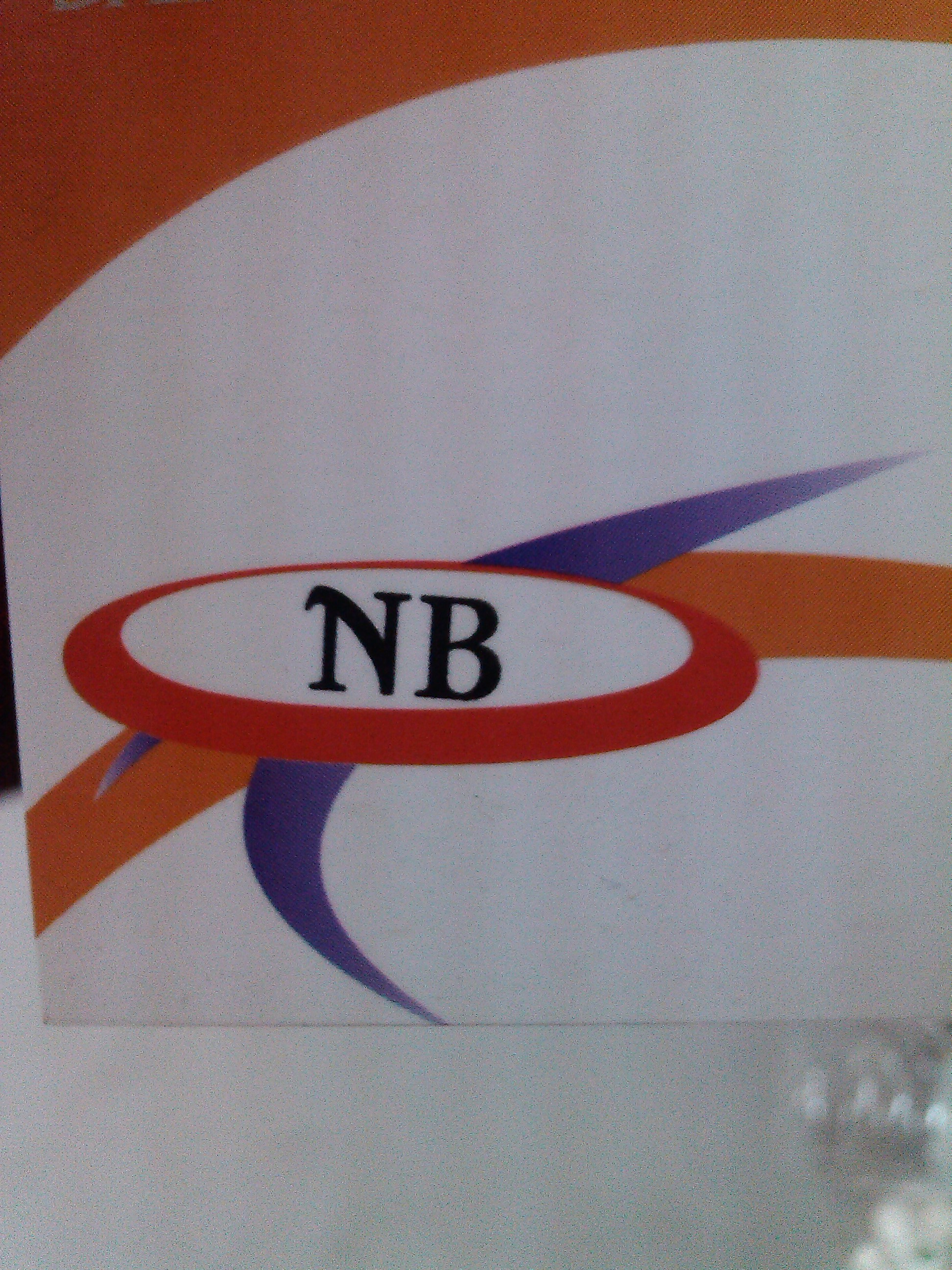 NB India Security Systems