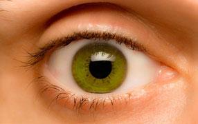 Amdavad Eye Laser Hospital