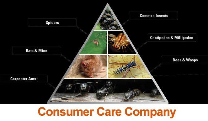 Consumer Care Company
