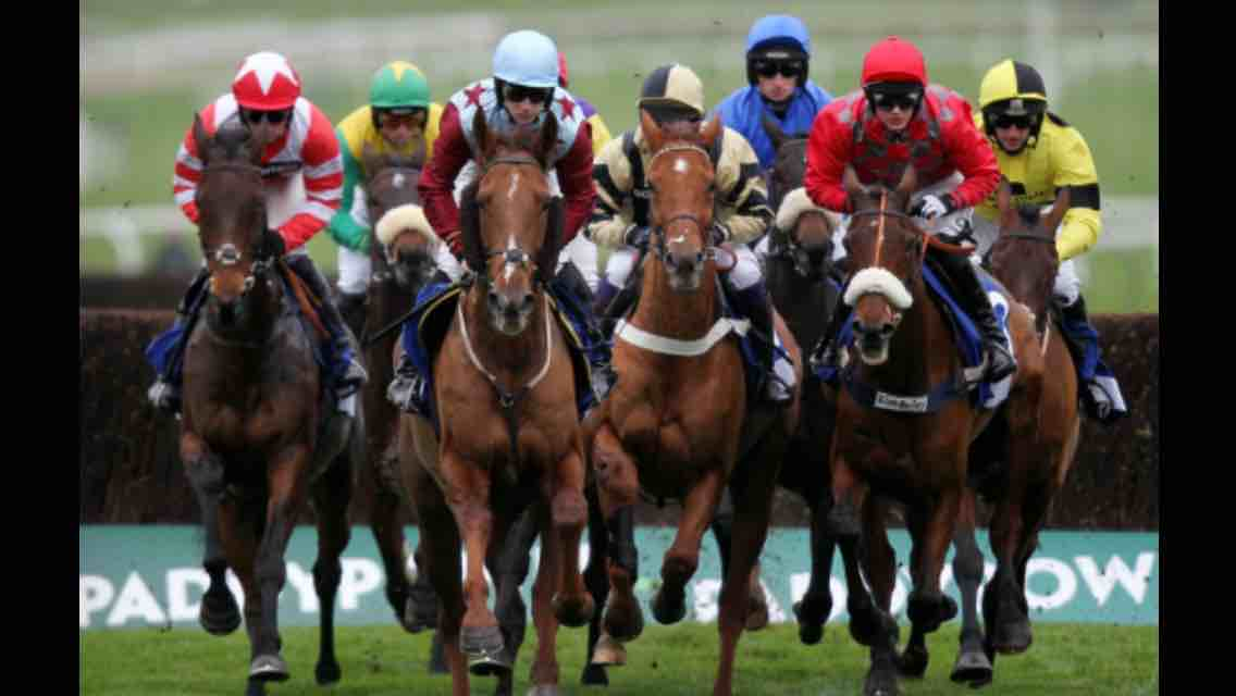 The Top Tipster