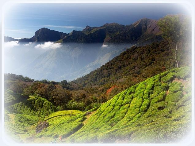 Mysore international travels
