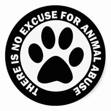 ✋🏼Stop animal cruelty🚫