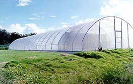 Sterling Farm Research & Services Pvt Ltd
