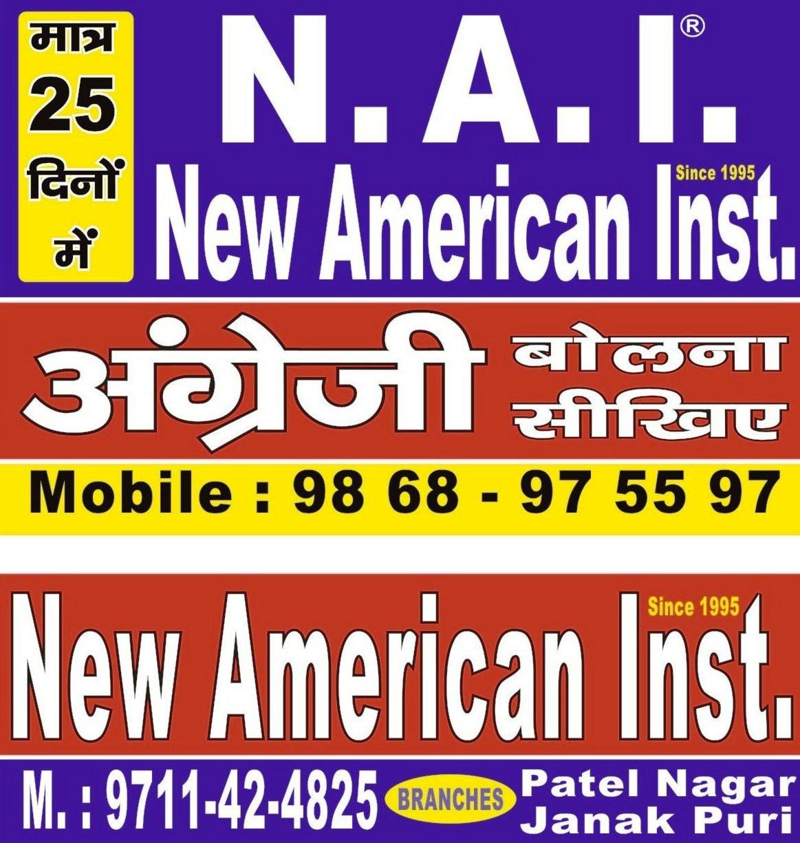 New American Institute