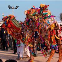 Visit All India Tour