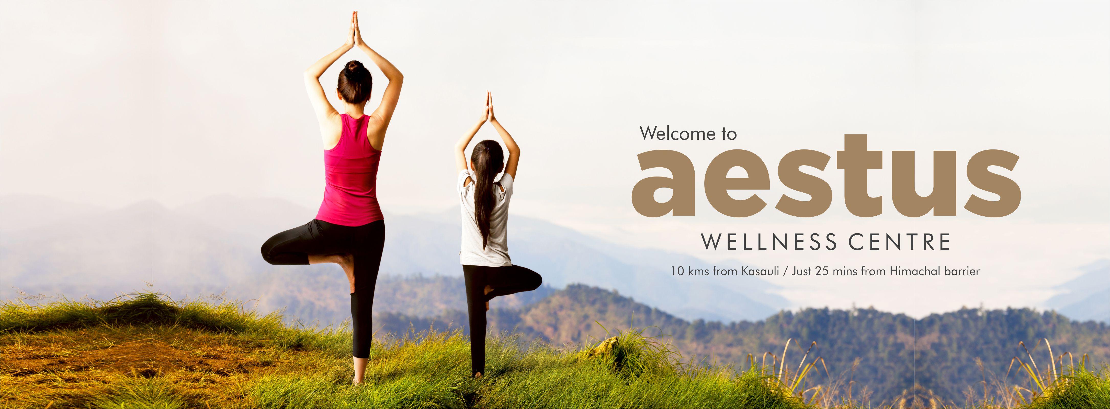 Aestus Wellness Centre Kasauli