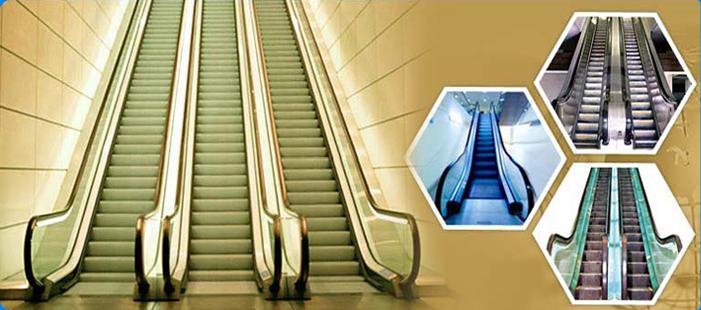 Vertex Lifts India Pvt Ltd