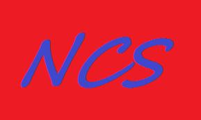 Nafees Consultancy Services