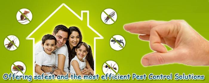 Poonawala Pest Control
