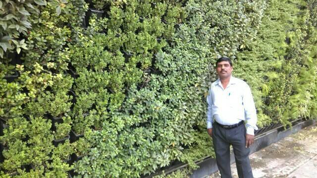 Vertical Garden Manufacturer