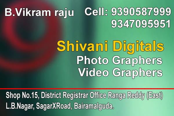 Shivani Digital Photo and Video Graphs