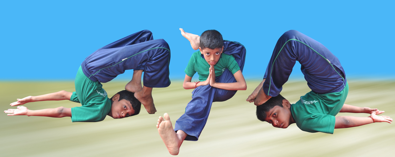 Bharat Vidya Mandir Matriculation School