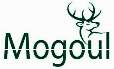 Mogoul