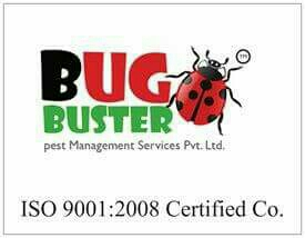 Bug Buster Pest Management Services Pvt Ltd