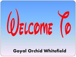 Goyalorchidwhitefield