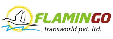 Flamingo  Travels Ahmedabad 8141864852