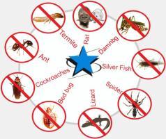 Golden HiCare Pest Control,Noida