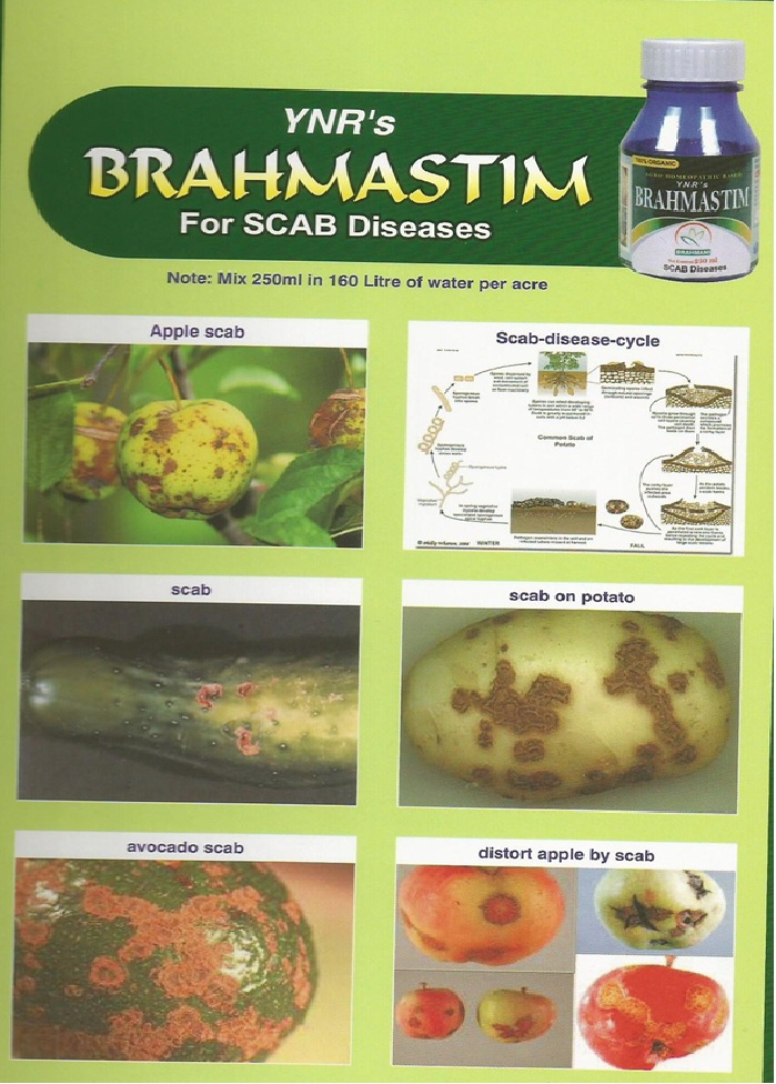 Organic Agri Products
