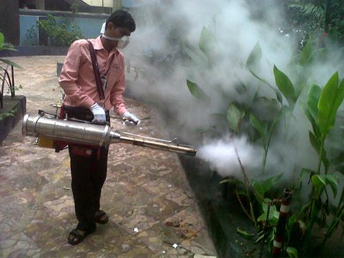 Advantage Pestcontrol